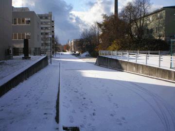 【写真: 雪の日(今日)の大学前】